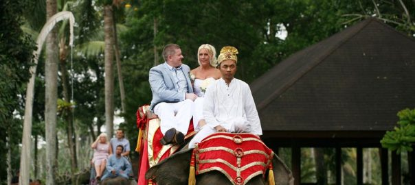 amanda and steven elephant park bali wedding