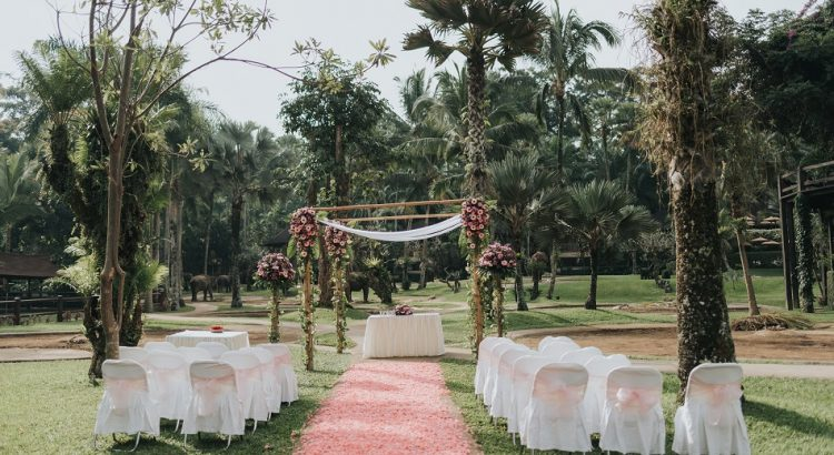cat and matthew - elephant bali wedding